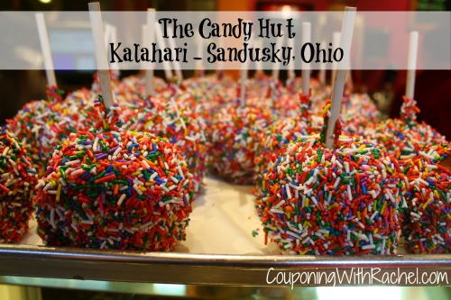 Kalahari ohio coupons discounts