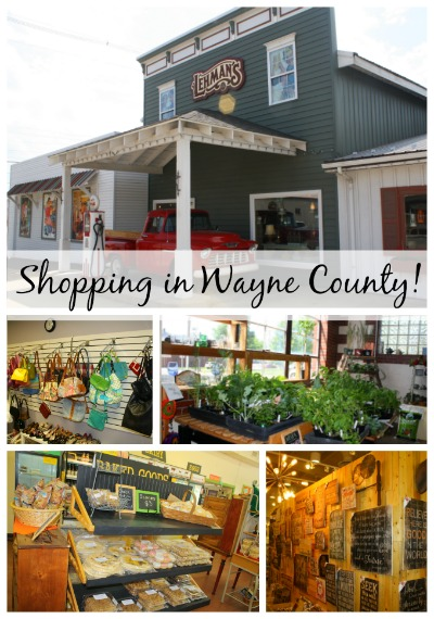shopping in wayne county ohio
